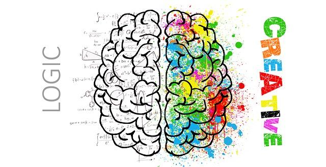 brain balance park slope